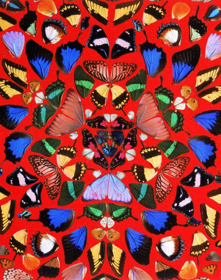 A Beautiful Thing (detail) | Damien Hirst | 2003