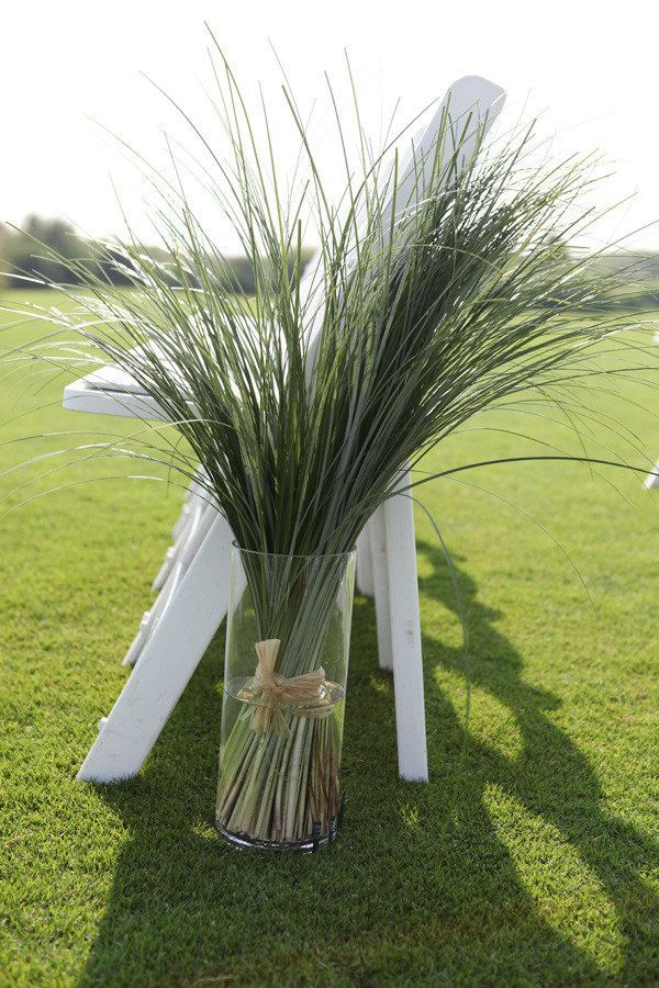 18 best images about simplistic beautiful decor on for Very tall ornamental grasses