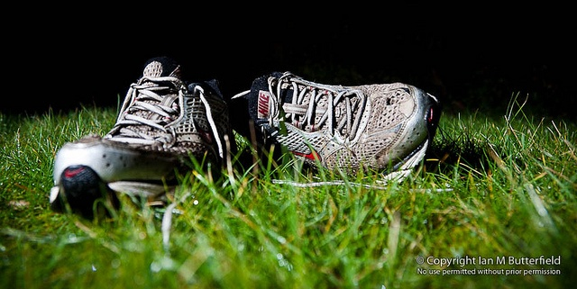 12 January 2011 : A pair of trainers on a lawn at night.    In a little under eight weeks I'm going to be running a half marathon. It's the Silverstone Half Marathon and it is at the famous race course. I need to step up a gear with my training. This a . Fantastic  runners.
