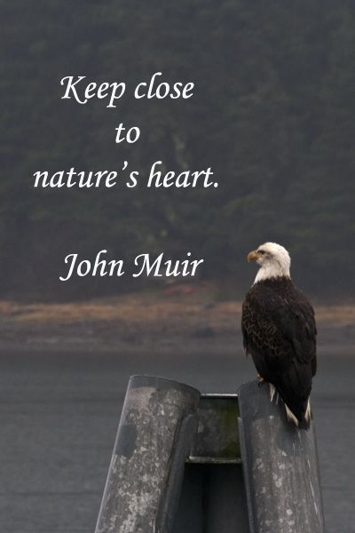 Keep close to natures heart.  https://www.facebook.com/motivate.your.life.force