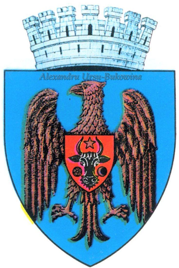 Stema orașului Chișinău.