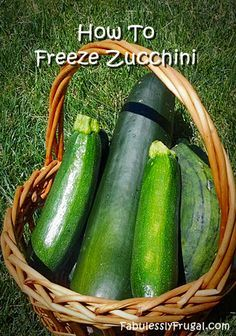 http://fabulesslyfrugal.com/?p=155876  How to Freeze Zucchini.  Easy step by step tutorial on how to freeze zucchini.  Find more Zucchini recipes here: http://pinterest.com/fabfrugal/recipes-zucchini/