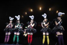 Maid in Bunny Girl! Delusion of girls in MomoKuro Woman Festival burst