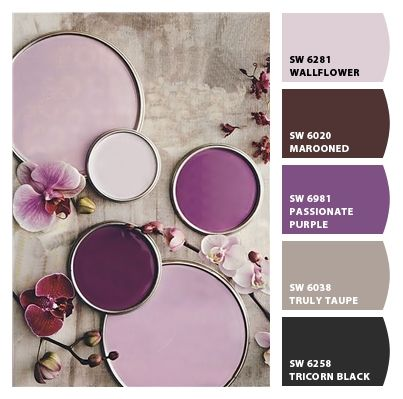 Shades Of Purple Paint 291 best paint images on pinterest | colors, color combinations