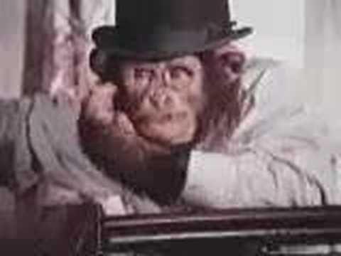 PG Tips Chimpanzee Ads