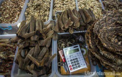 Самый большой в мире рынок народной медицины. ФОТО http://ukrainianwall.com/blogosfera/samyj-bolshoj-v-mire-rynok-narodnoj-mediciny-foto/  Вы знаете, где можно купить сушёную змею? Или где достать черепаший панцирь? А пенис броненосца? В большинстве стран мира таких товаров просто не найти. В Китае это обычные вещи. Я