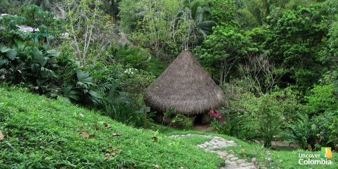Taironaka, a natural reserve located on the foothill of the Sierra Nevada de Santa Marta.