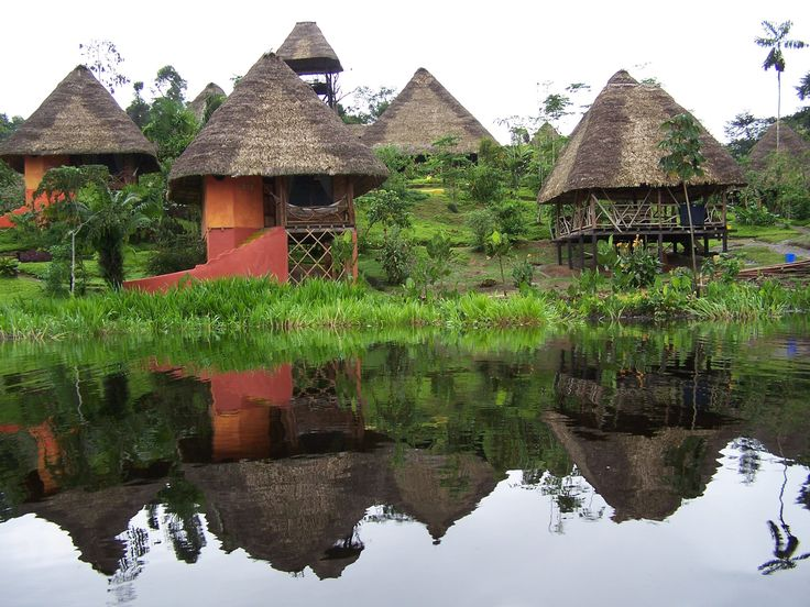 Our bungalows at Napo Wildlife Center. #visitsamerica Yasuni - Amazon Rainforest Ecuador© Carmen Cristina Carpio Tobar