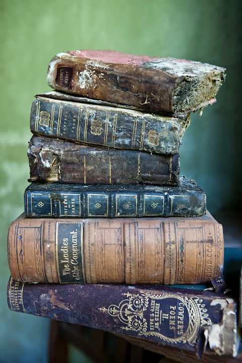 Decaying books in an abandoned manor home.