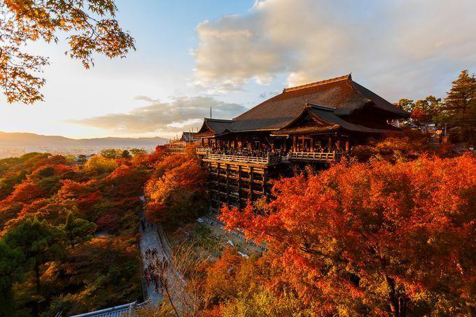 ついに紅葉シーズン!日本一美しい京都の紅葉スポット10選