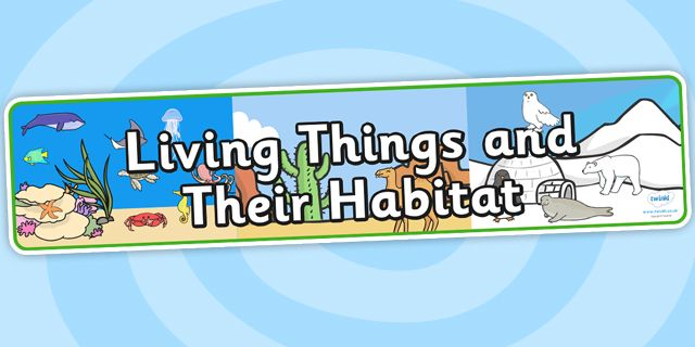 Image result for living things and their habitats banner