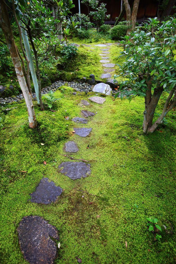 Dainei-ken garden, Nanzen-ji temple, Kyoto 京都南禅寺大寧軒の潤った苔と飛び石