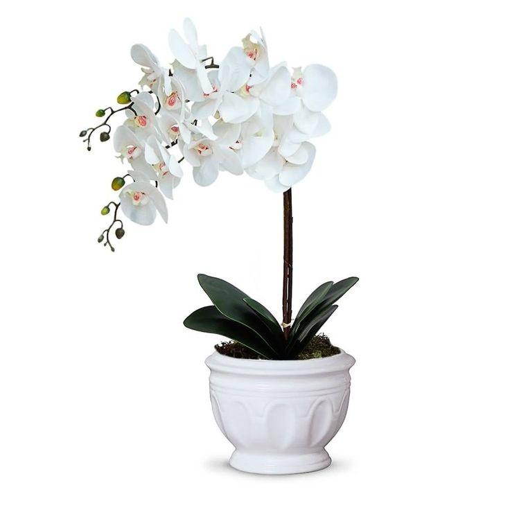 Arranjo de Flores Artificiais Orquídeas Permanentes Coleção Real Toque no cahepot em ceramica.Não precisa ser regada.Não precisa ir ao sol.Não tem cheiro, o que a faz uma ótimaopção para osalérgicos, etambémpode ser levada a mesa sem que o cheiro interfiranocheiro da comida.Muito similar a natural.O que é um Arranjo Real Toque? É um arranjo com flores de alta qualidade feitas em  silicone. A cada dia vem ganhando o interesse dos consumido...