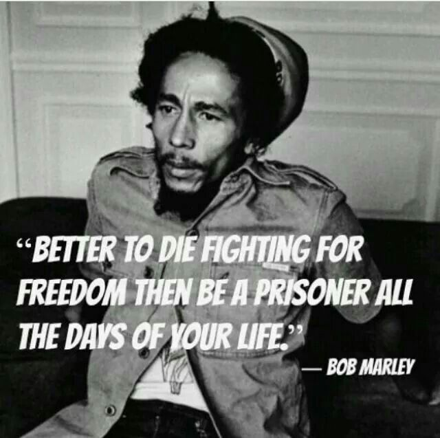 Bob Marley History Quote: 663 Best Images About Never Forget The Past... On