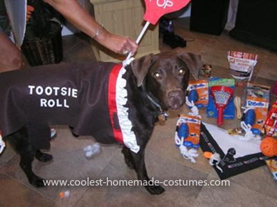 Homemade Tootsie Roll Pet Dog Costume... This website is the Pinterest of pet halloween costumes