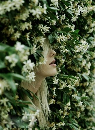 ❀ Flower Maiden Fantasy ❀ beautiful photography of women and flowers - Jasmine