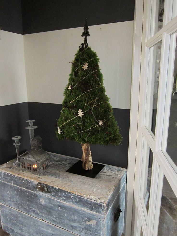 Rock Cap moss Christmas tree Star 16
