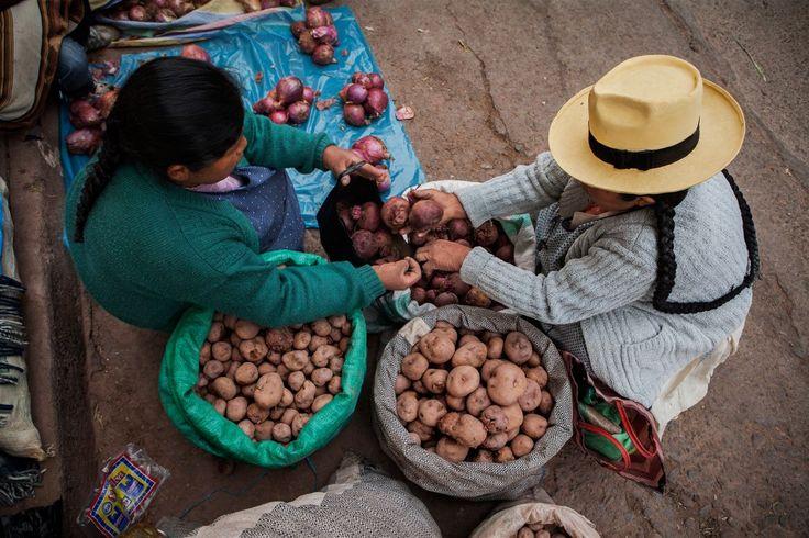 Agricultura en Cusco (Foto de Gary Manrique)