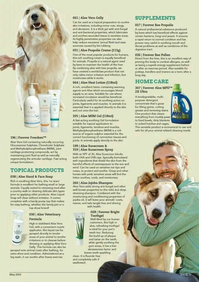Aloe Vera benefits are many, but the actual benefits depend on the individual case. It is always worth persevering with Aloe Vera and the Bee Products, as early results may not be apparent. If it does not work for you, there is a 60 day money back satisfaction guarantee on the products we sell. With Forever Living Products you are getting the whole benefits of Aloe Vera and Bee Products, and this is what makes Forever Living Products unique.