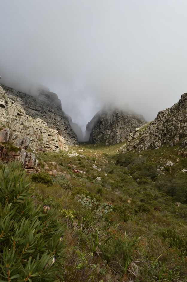 Tabletop Mountain, Cape Town, South Africa- 10 day itinerary