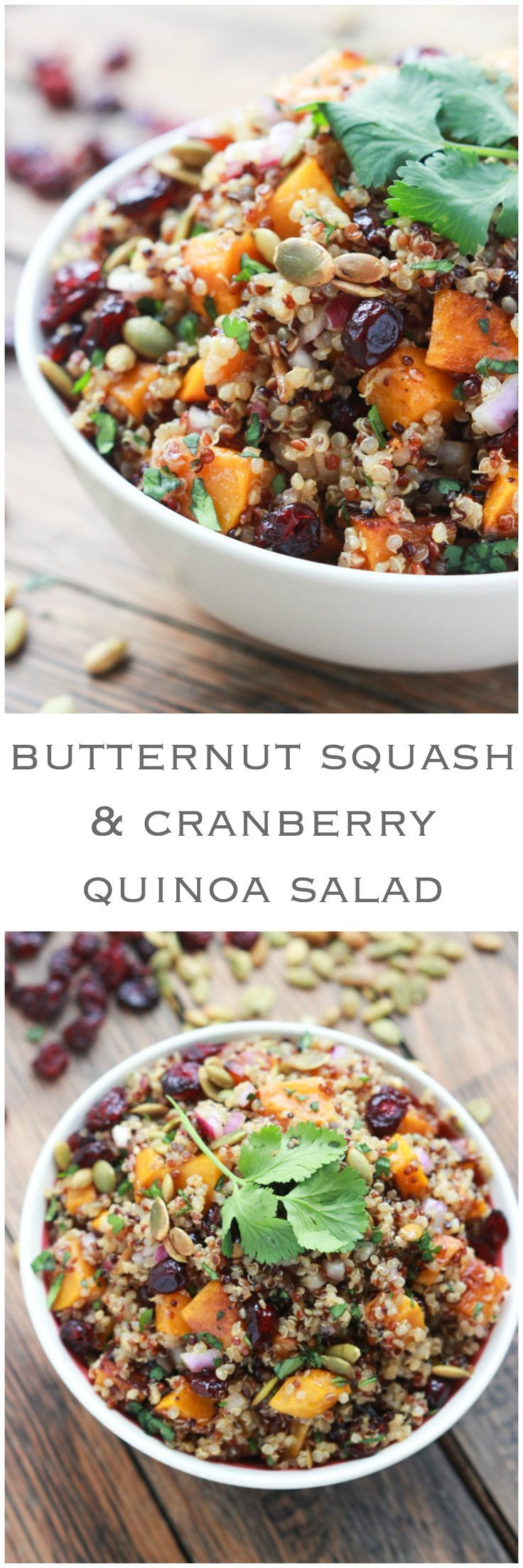 Butternut Squash and Cranberry Quinoa Salad - healthy fall salad with delicious and clean ingredients | http://littlebroken.com /littlebroken/