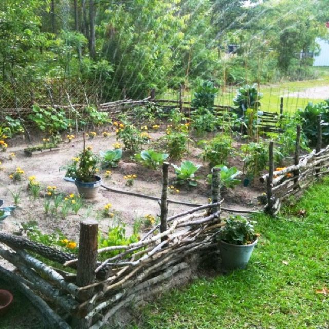 Our little Hobbit garden. Handmade fence and all...
