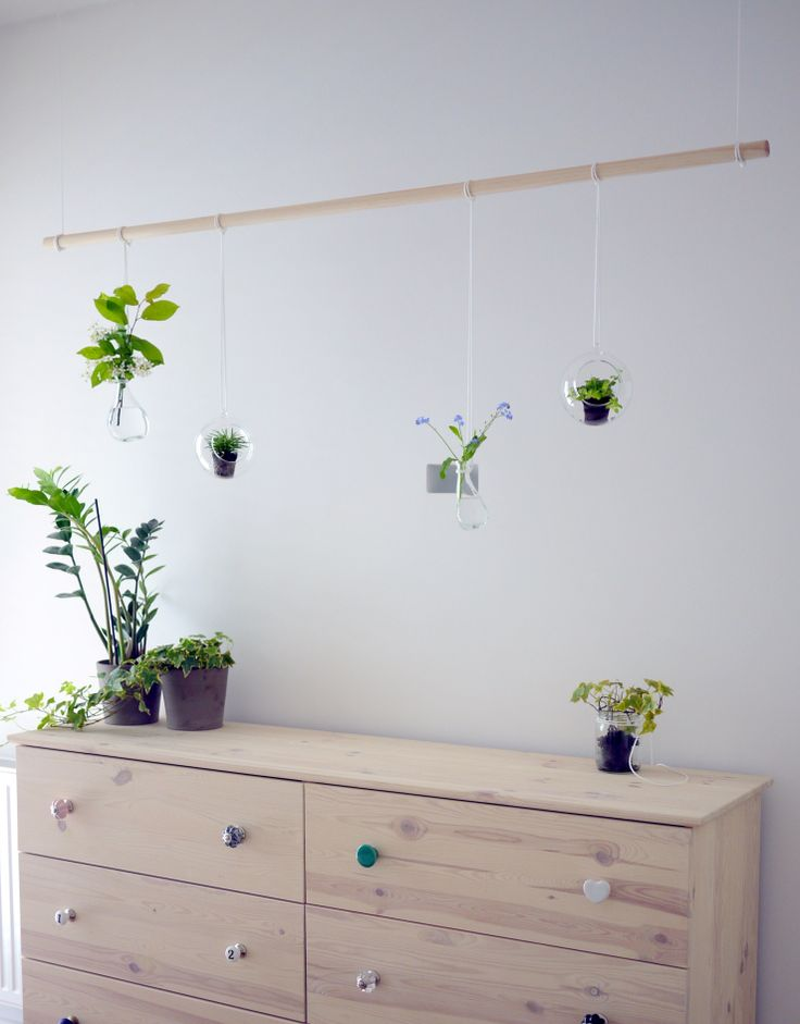 DIY green installation with plants by projectorium