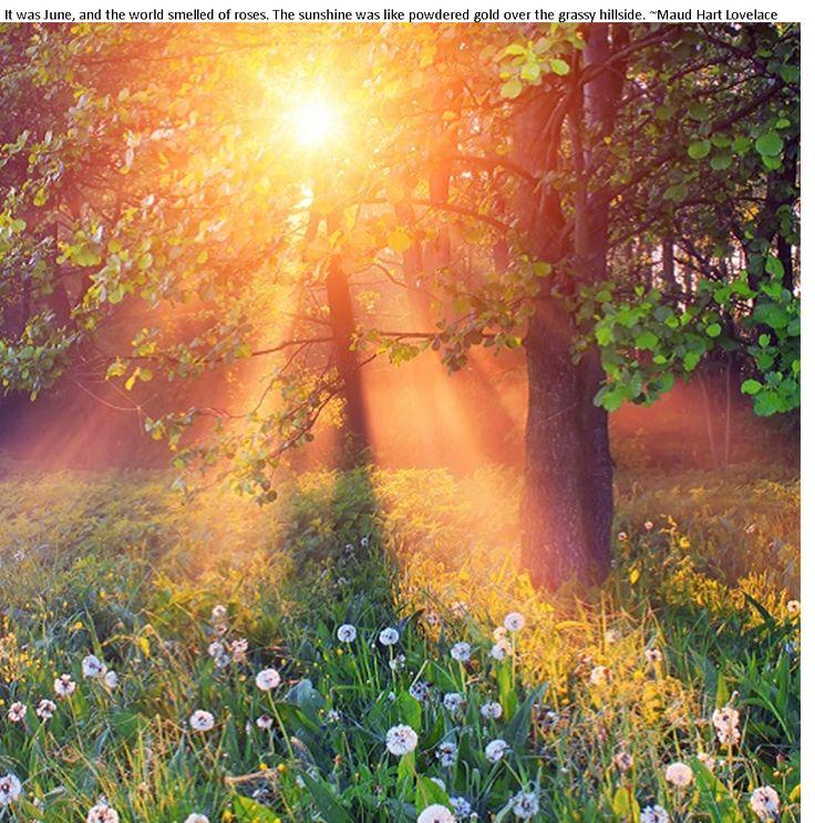 поздравление с первыми лучами солнца