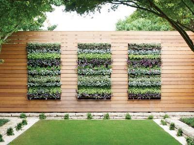 Wie man mehr in weniger Raum mit einem vertikalen Garten wächst