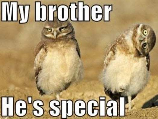 The Best Sibling Memes about Sister and Brothers – Oh and