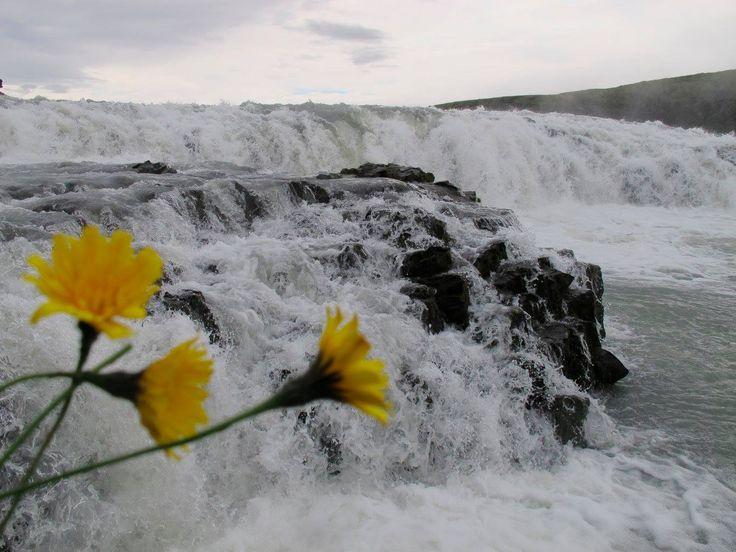 Foto Mari Carmen Sáenz Fernández. Finalista concurso #EsteVeranoTocaIslandia