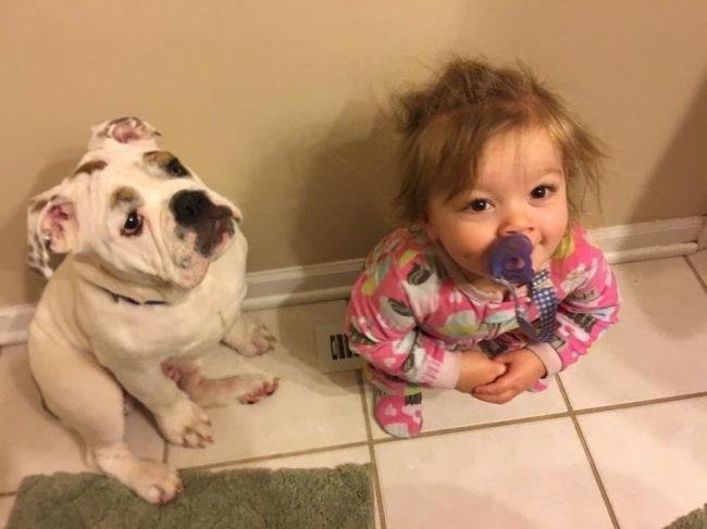 Смешные картинки дети и собака, картинки