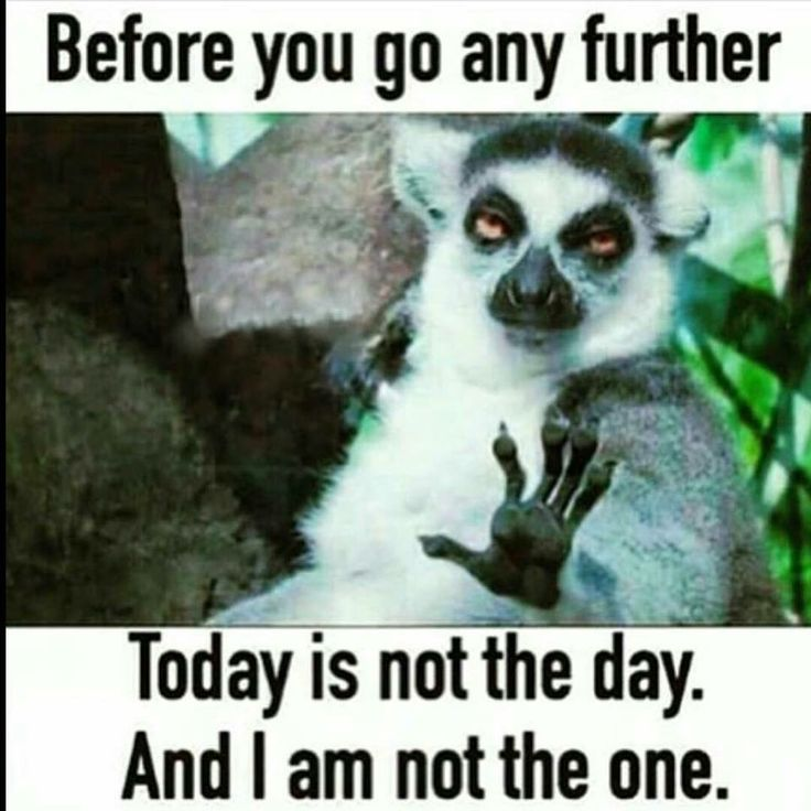 Completely me, yesterday AND today!! Not in the mood for people.