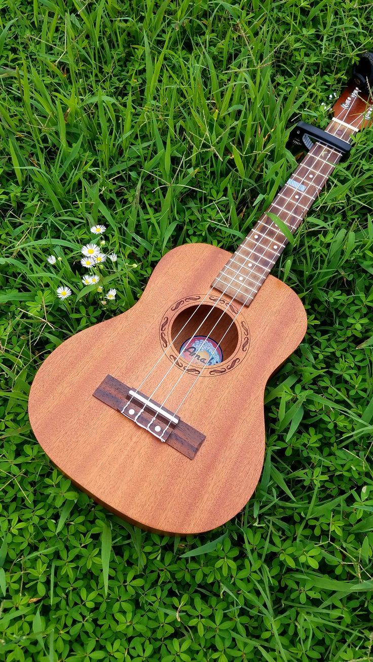 318 best ukulele images on pinterest music diy and children concert ukulele this is my favorite picture of my ukulele hexwebz Images