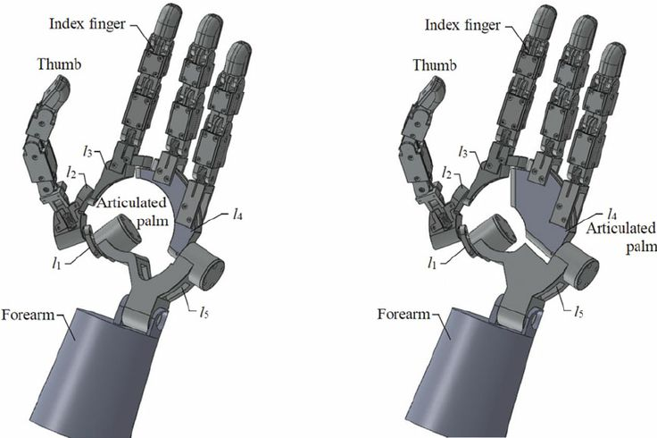 Fig. 8. A multifingered metamorphic robotic hand. (a) A metamorphic hand with hollow palm. (b) A metamorphic hand with opposable palm.