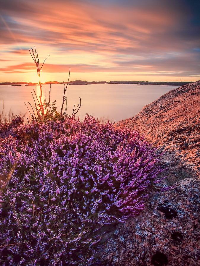 Sunset in Lysekil, Sweden