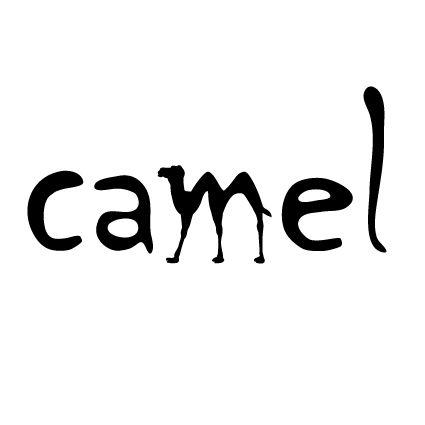 #camel #verbicon