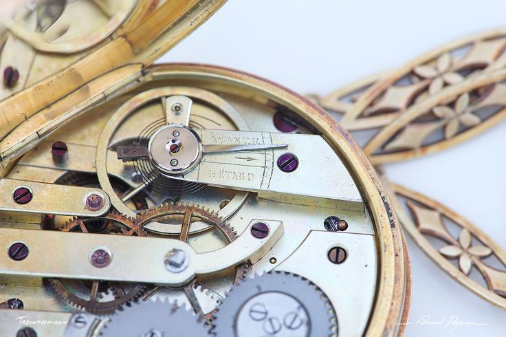 Remontoir au pendant   Winding Watch: http://tazintosh.com #FocusedOn #Photo #Canon EF 180mm f/3.5L Macro USM #Canon EOS 5D Mark II #Engrenage #Gear #Macro #Montre #Watch #Proxy