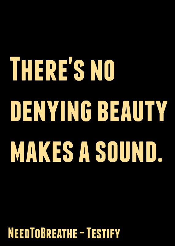 Theres no denying beauty makes a sound.... Testify by NeedToBreathe <3 love this song...