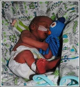 Crochet octopus for premature babies. High priority project