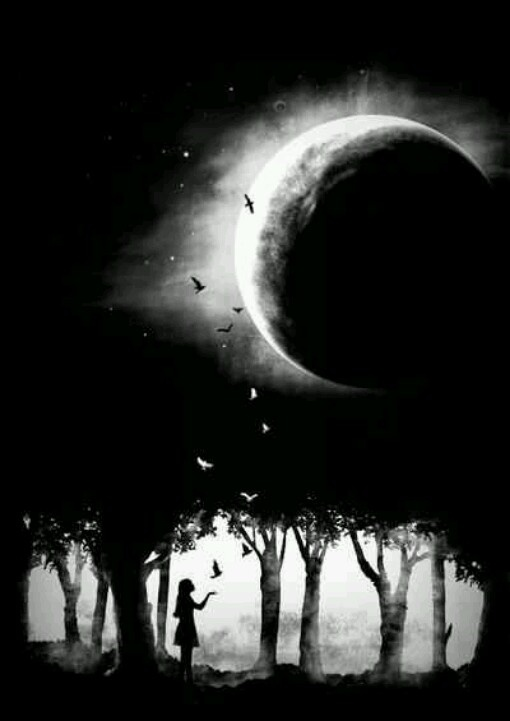 I like the black and white effect.