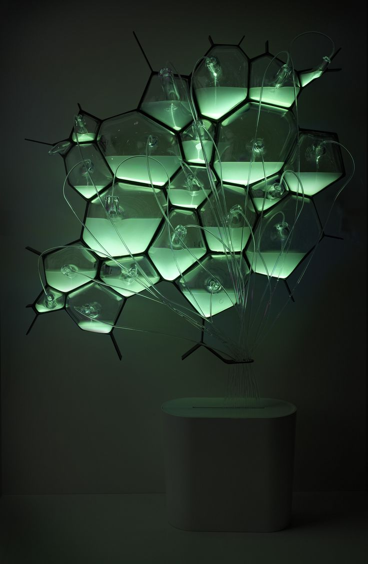 The bio-light uses different biological technologies to create ambient light effects. The concept explores the use of bioluminescent bacteria, which are fed with methane and composted material (drawn from the methane digester in the Microbial Home system). Alternatively the cellular light array can be filled with fluorescent proteins that emit different frequencies of light.