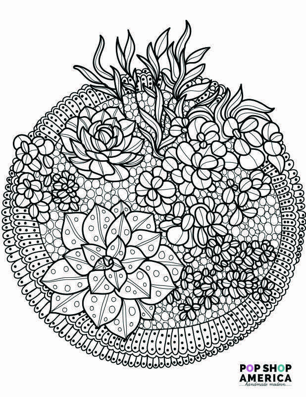 Free Adult Coloring Book Pages Succulent Terrariums
