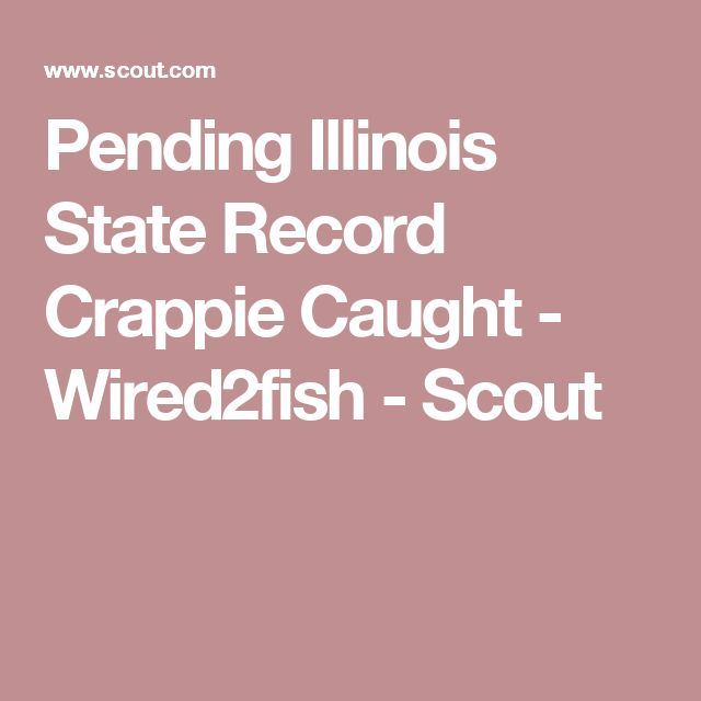 Pending Illinois State Record Crappie Caught - Wired2fish - Scout