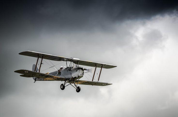 Tiger Moth by vipmig