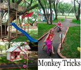 Monkey Tricks Party Venue - Montana, is on a secure beautiful one hectare stand with huge old trees canopying the site - not something one is used to anymore and sure to provide endless pleasure for the Kids. There are Tree Houses to climb into, a Foofie slide for kids over age 10, BMX track and lots of open space for kids to run around.