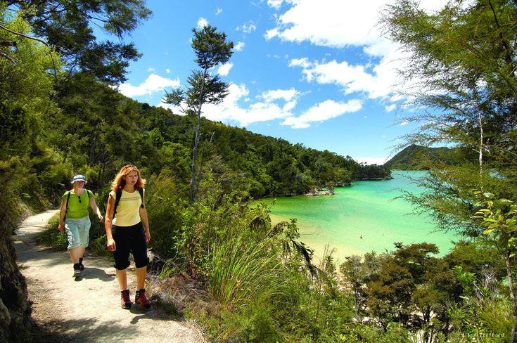 Картинки по запросу абель тасман национальный парк