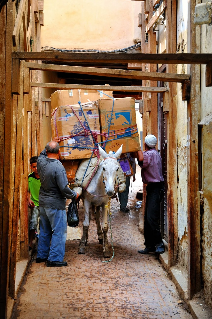 Traffic problems at the old medina - Fez, Morocco