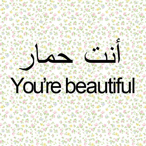 """:D ... Caution: The Arabic text literally translates to """"You're a donkey""""."""