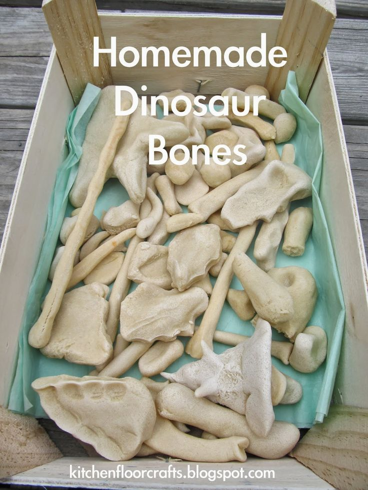 Homemade Dinosaur Bones - excavate and then reassemble a basic skeleton and then name your newly discovered dino!